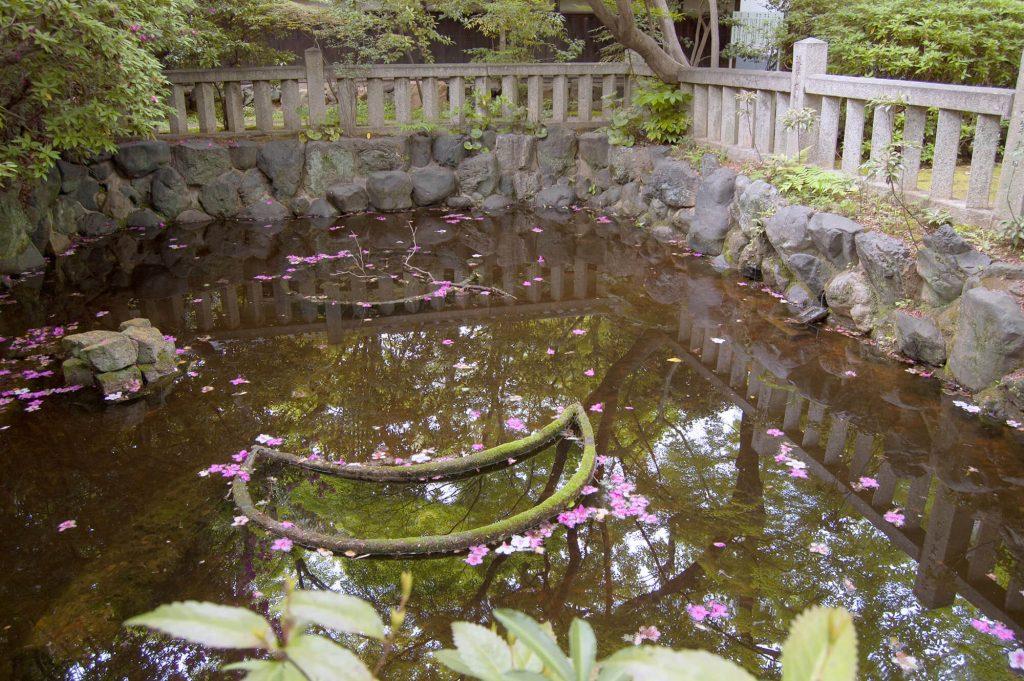 Toganji Temple Garden