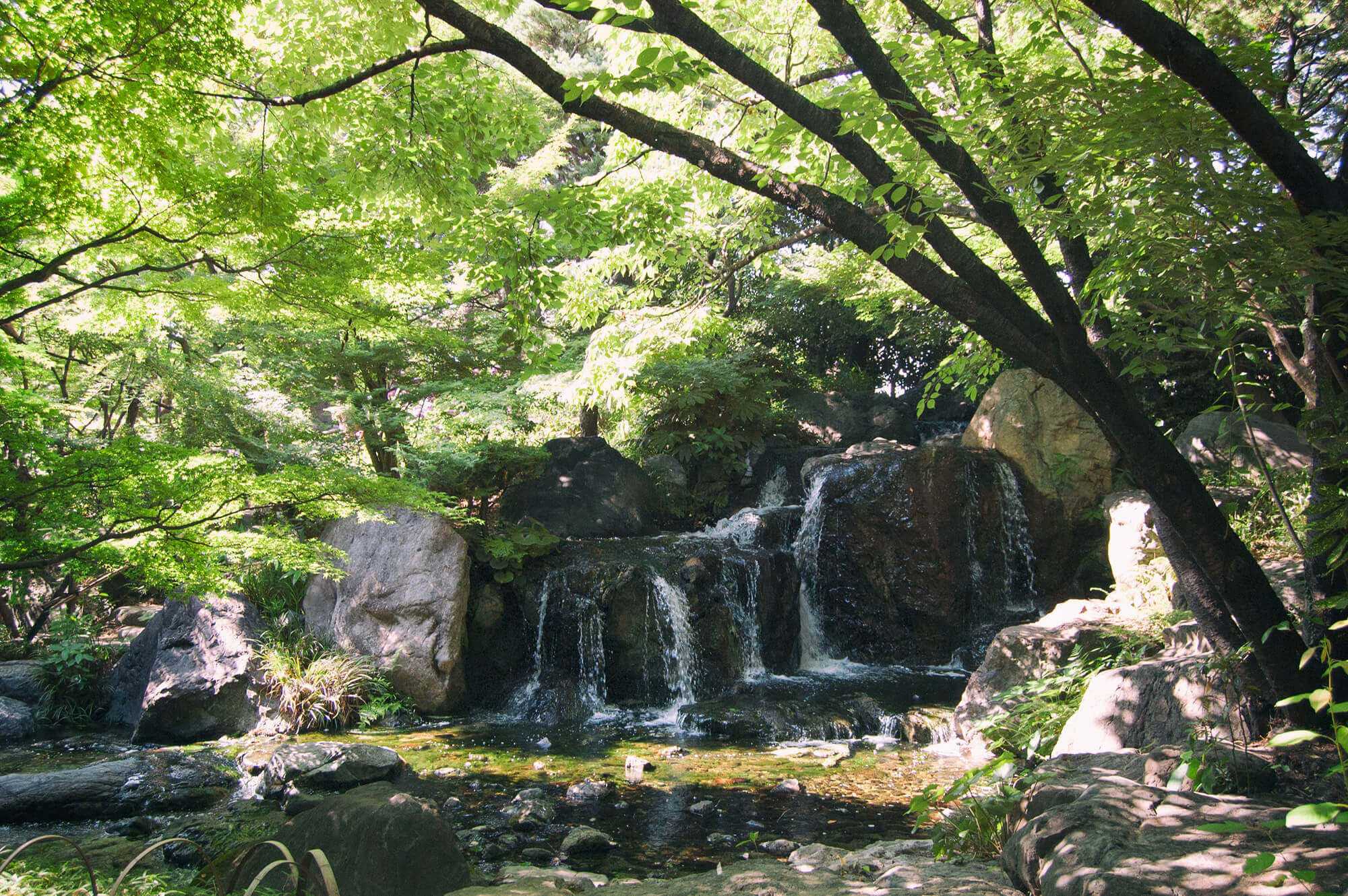 Waterfall in Shirotori Garden